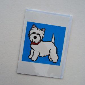 DSC_1197_Blue_Dog