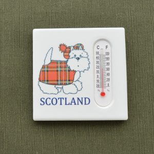 Thermometer Fridge Magnet